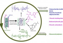 Synthesis of Synthons by Controlled Depolymerisation of Lignocellulosic Biomass figure