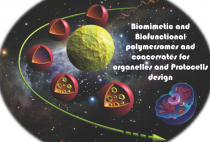 Design of artificial organelles and cells figure
