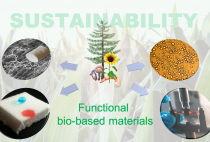 Functional bio-based Materials and Sustainability figure